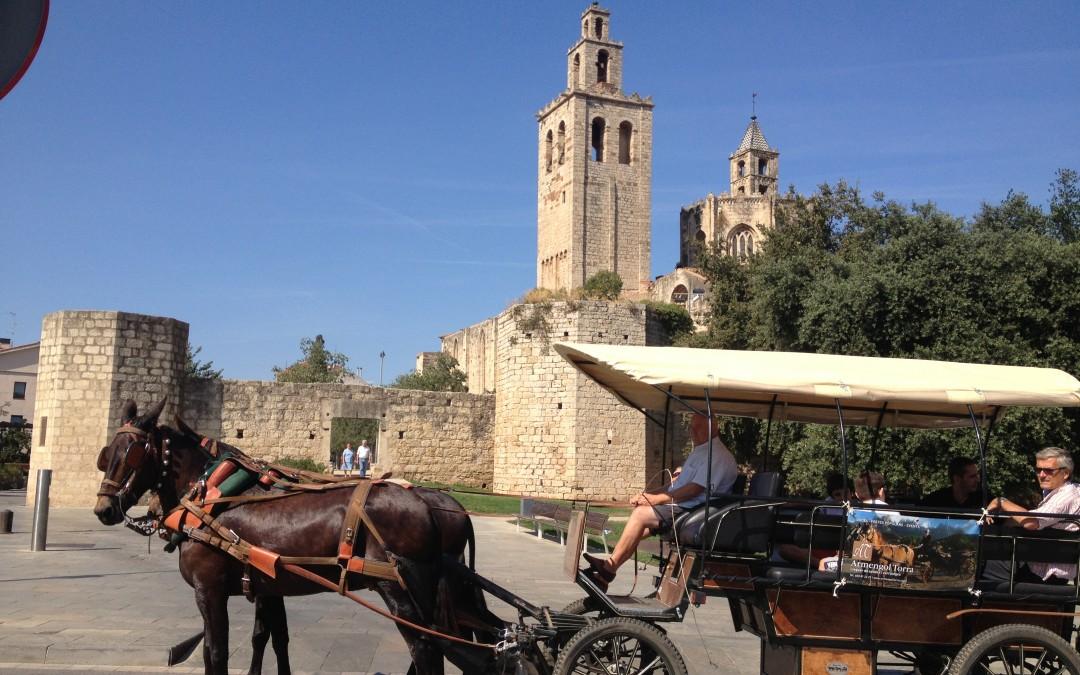 Sant Antoni 2015, a caballo o en carruaje