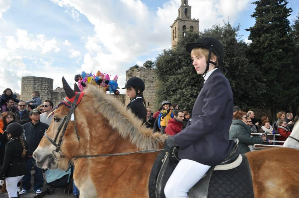Sant Antoni 2015 en imágenes