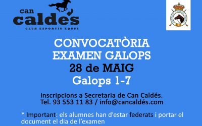 Horario Provisional  Galopes (28/05/17)