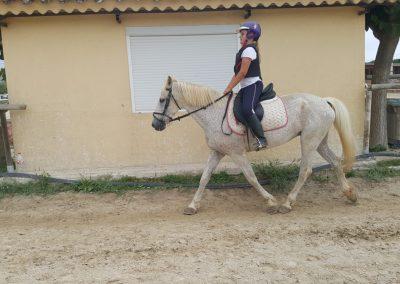 3a semana Campus equitacion Can Caldes (105)