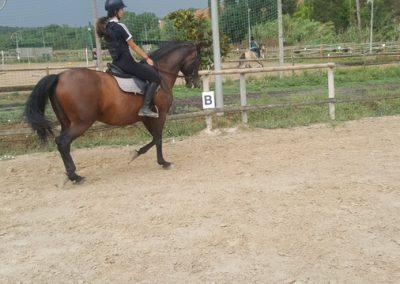 3a semana Campus equitacion Can Caldes (13)