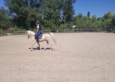 3a semana Campus equitacion Can Caldes (139)