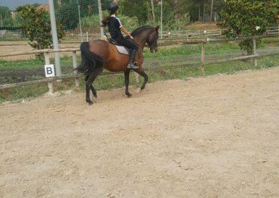 3a semana Campus equitacion Can Caldes (14)