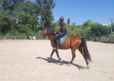 3a semana Campus equitacion Can Caldes (141)
