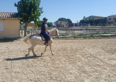 3a semana Campus equitacion Can Caldes (143)