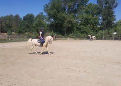 3a semana Campus equitacion Can Caldes (146)
