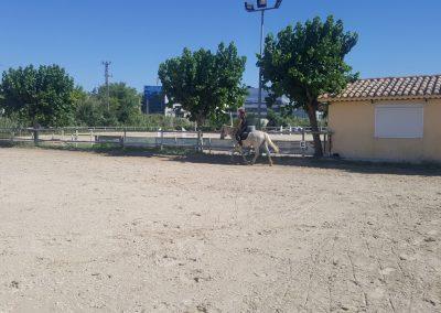 3a semana Campus equitacion Can Caldes (147)