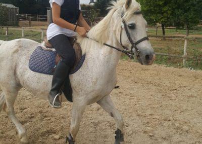 3a semana Campus equitacion Can Caldes (15)