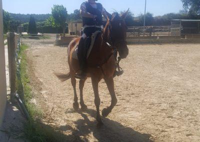 3a semana Campus equitacion Can Caldes (151)