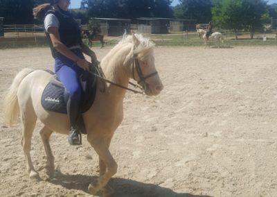 3a semana Campus equitacion Can Caldes (153)