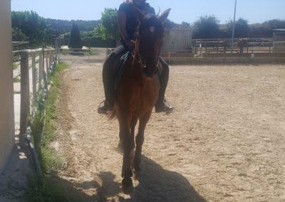 3a semana Campus equitacion Can Caldes (154)