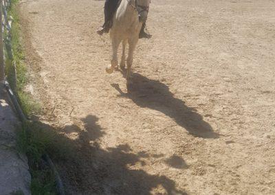 3a semana Campus equitacion Can Caldes (155)