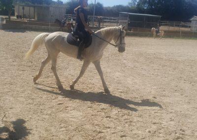 3a semana Campus equitacion Can Caldes (156)