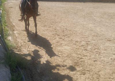 3a semana Campus equitacion Can Caldes (157)