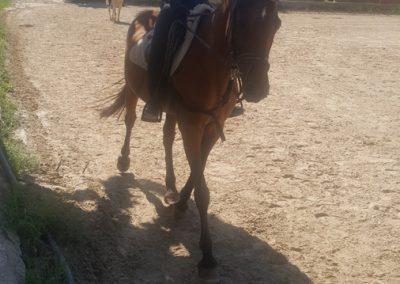 3a semana Campus equitacion Can Caldes (158)