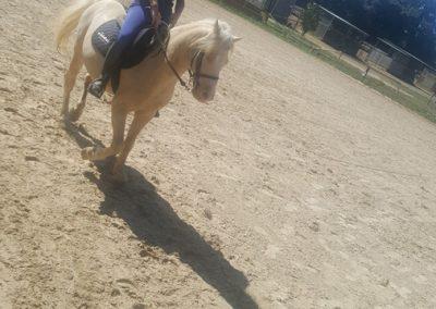 3a semana Campus equitacion Can Caldes (159)