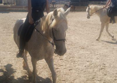 3a semana Campus equitacion Can Caldes (161)