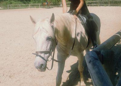 3a semana Campus equitacion Can Caldes (163)