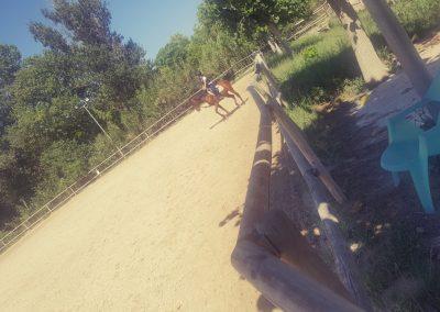 3a semana Campus equitacion Can Caldes (166)