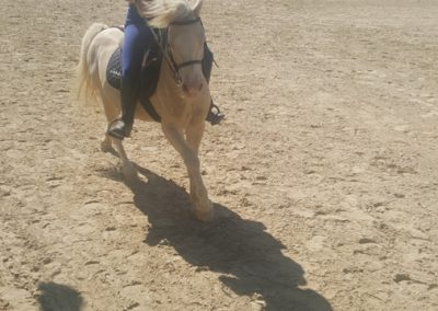 3a semana Campus equitacion Can Caldes (172)