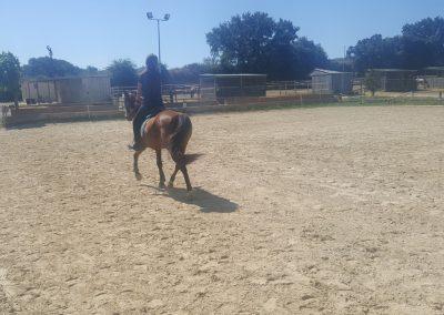 3a semana Campus equitacion Can Caldes (174)