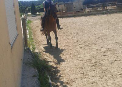 3a semana Campus equitacion Can Caldes (188)