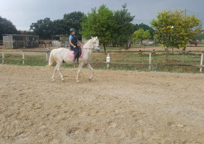 3a semana Campus equitacion Can Caldes (19)