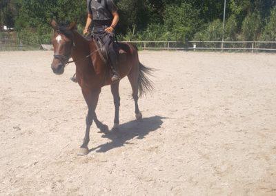 3a semana Campus equitacion Can Caldes (198)