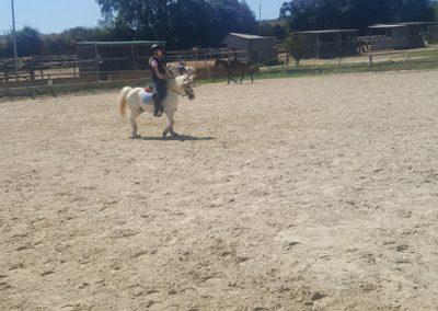 3a semana Campus equitacion Can Caldes (202)