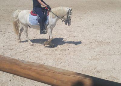 3a semana Campus equitacion Can Caldes (208)