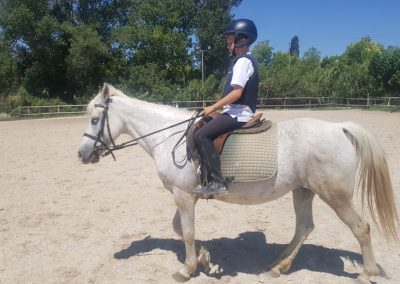 3a semana Campus equitacion Can Caldes (218)