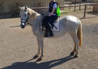 3a semana Campus equitacion Can Caldes (227)