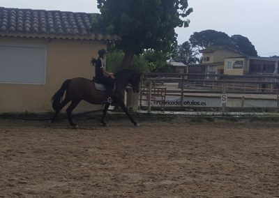 3a semana Campus equitacion Can Caldes (23)