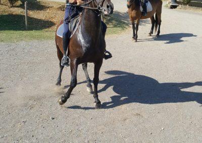 3a semana Campus equitacion Can Caldes (235)