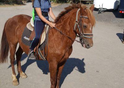 3a semana Campus equitacion Can Caldes (239)