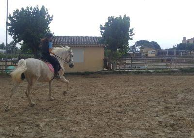 3a semana Campus equitacion Can Caldes (24)