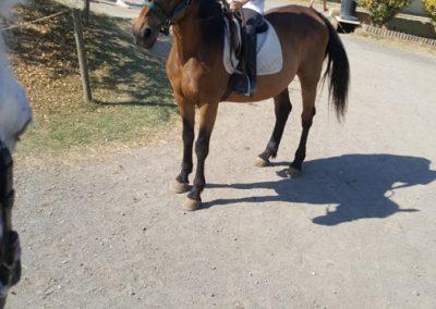 3a semana Campus equitacion Can Caldes (240)