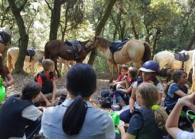 3a semana Campus equitacion Can Caldes (250)