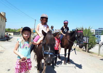3a semana Campus equitacion Can Caldes (261)