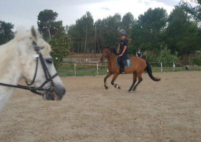 3a semana Campus equitacion Can Caldes (30)