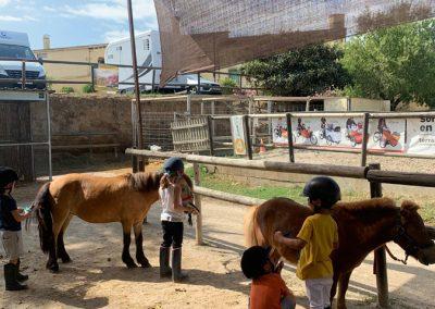3a semana Campus equitacion Can Caldes (322)