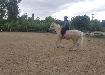 3a semana Campus equitacion Can Caldes (40)