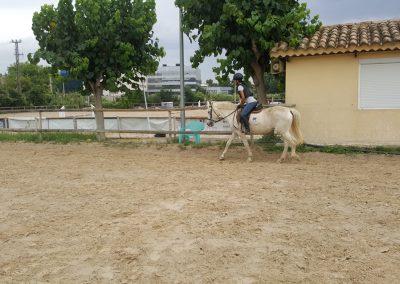 3a semana Campus equitacion Can Caldes (49)