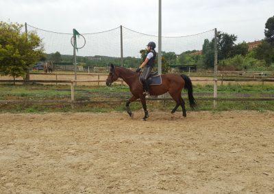 3a semana Campus equitacion Can Caldes (53)