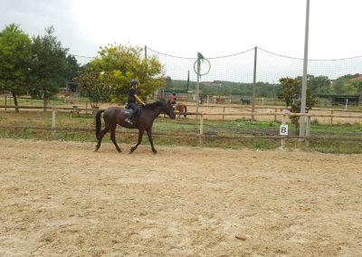 3a semana Campus equitacion Can Caldes (55)