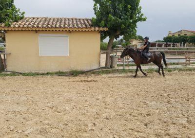 3a semana Campus equitacion Can Caldes (60)