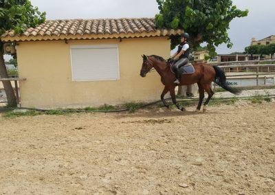 3a semana Campus equitacion Can Caldes (62)