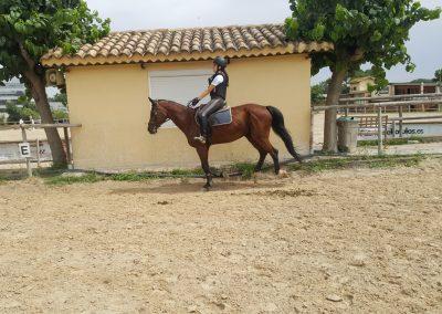 3a semana Campus equitacion Can Caldes (63)