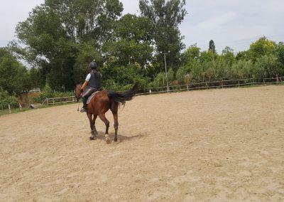 3a semana Campus equitacion Can Caldes (64)