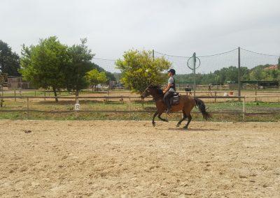 3a semana Campus equitacion Can Caldes (67)
